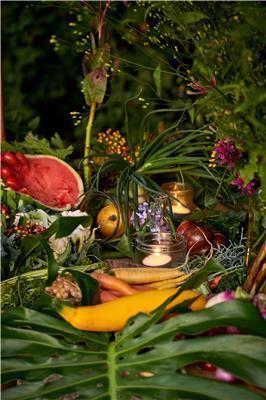 Chalet de la Foret Table Potager 11 credit sebastien van de walle